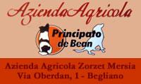 Azienda Agricola Zorzet Mersia - Principato De Bean - Begliano